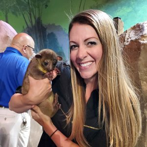 kinkajou encounter